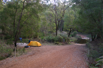 Camping 1km before Warren Hut on the banks of the Warren River.