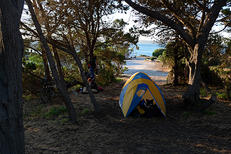 Camping at Browns Beach