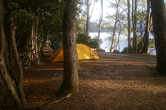 Campsite at Lake St Clair